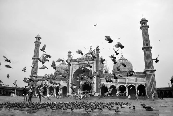 Happy World Photography Day    www.vaclicks.com