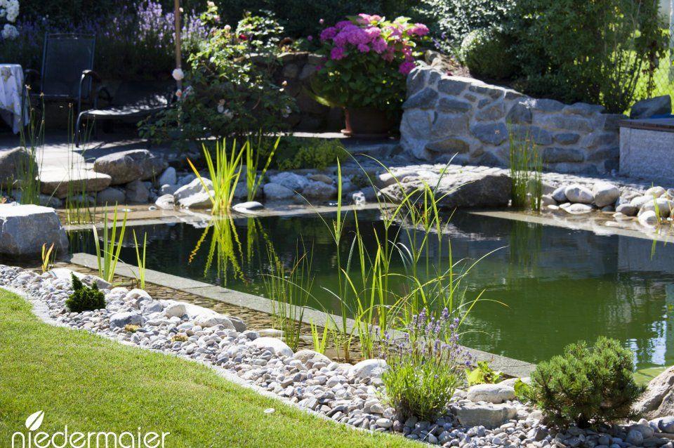 Schwimmteich In Einem Romantischen Garten Gartendesign Naturschwimmbecken Gartengestaltung Garten Design