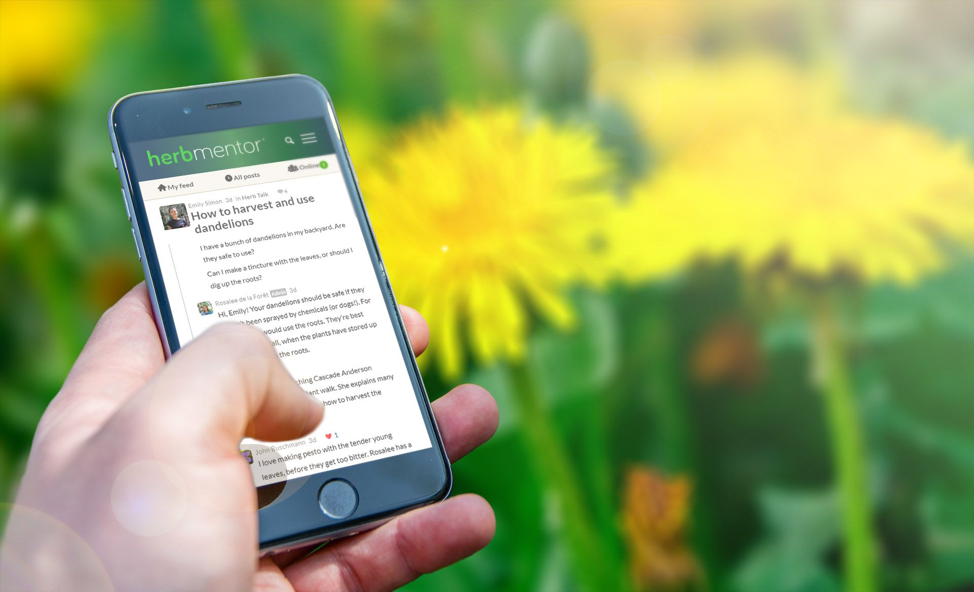 HerbMentor: Your Online Herbal Village and Learning ...