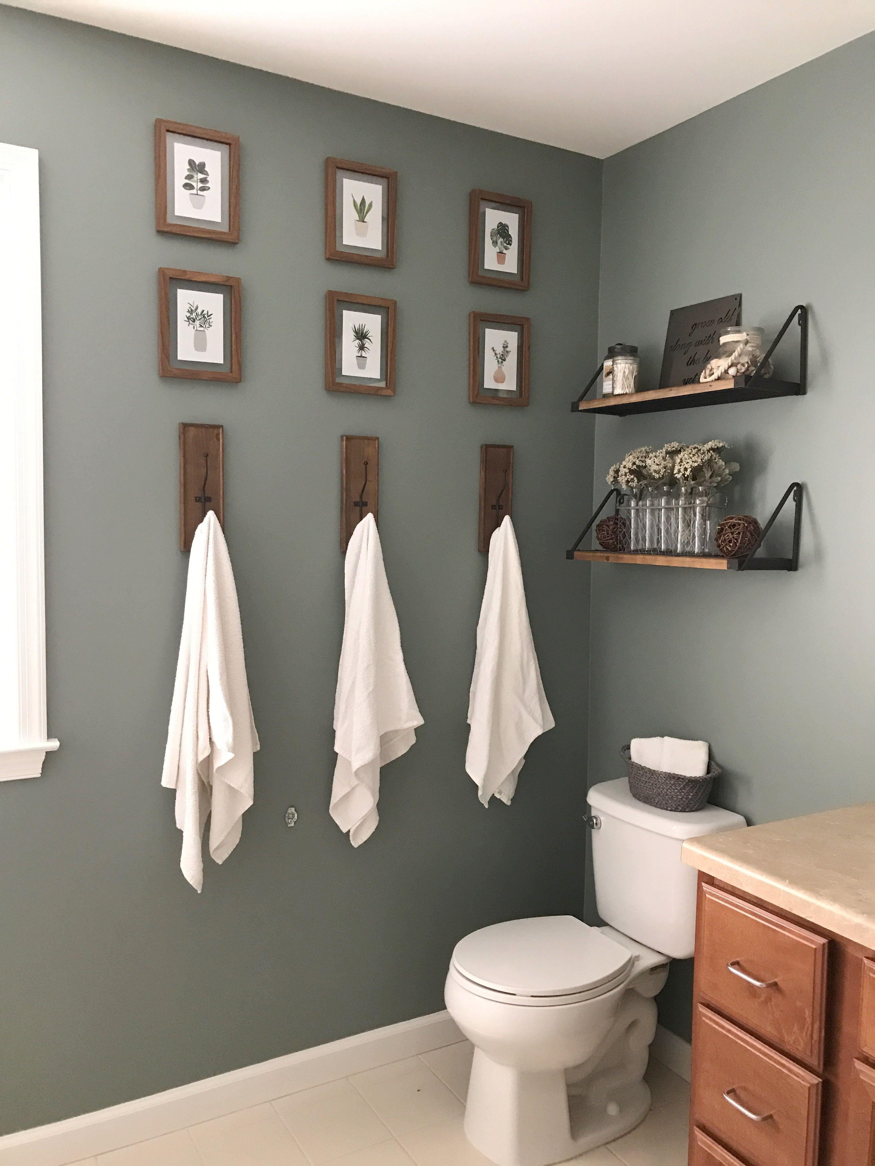 Bathroom | Benjamin Moore Rushing River | Bathroom color ...