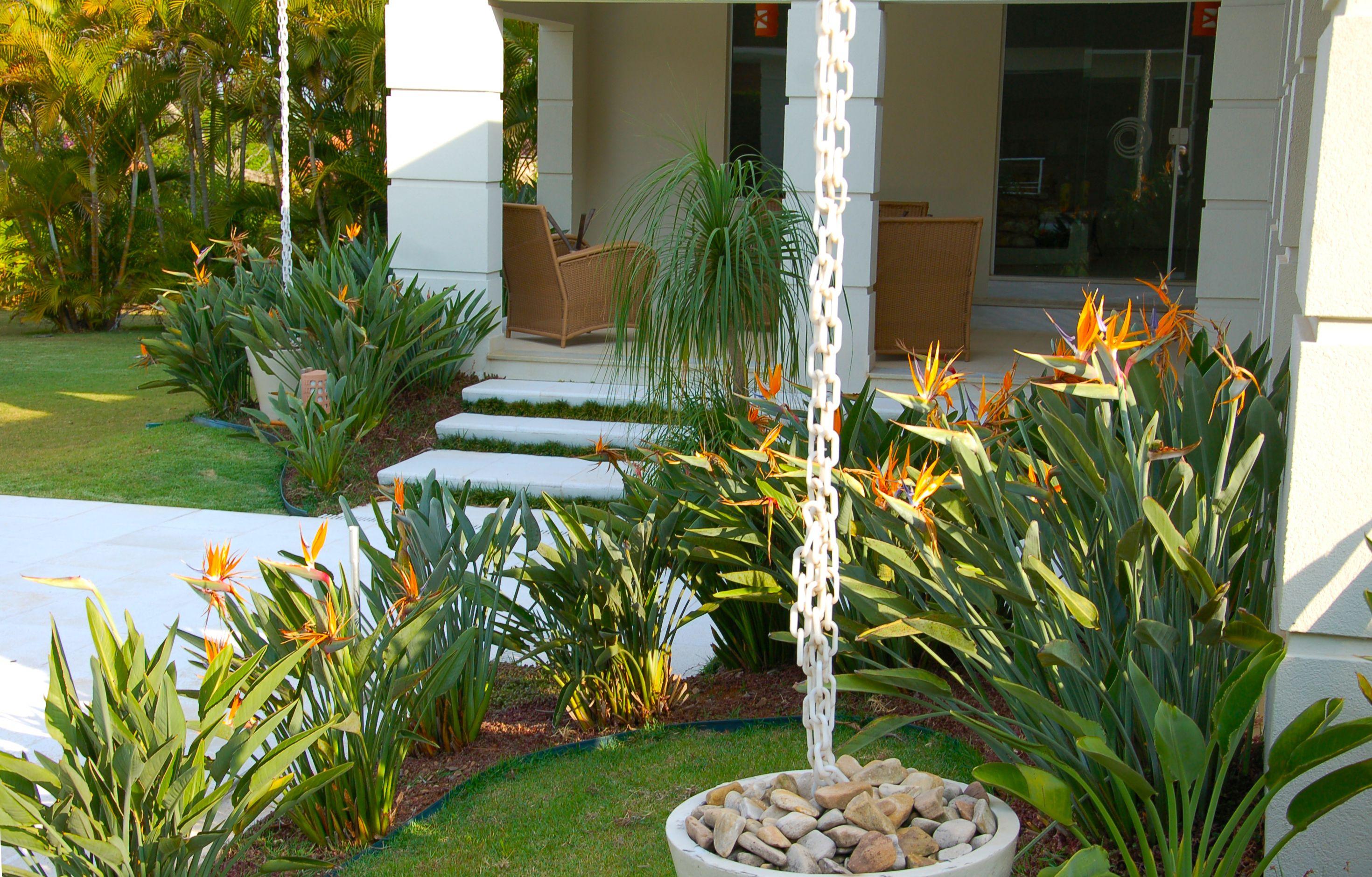 plantas mais usadas em paisagismo residencial 2014 ...