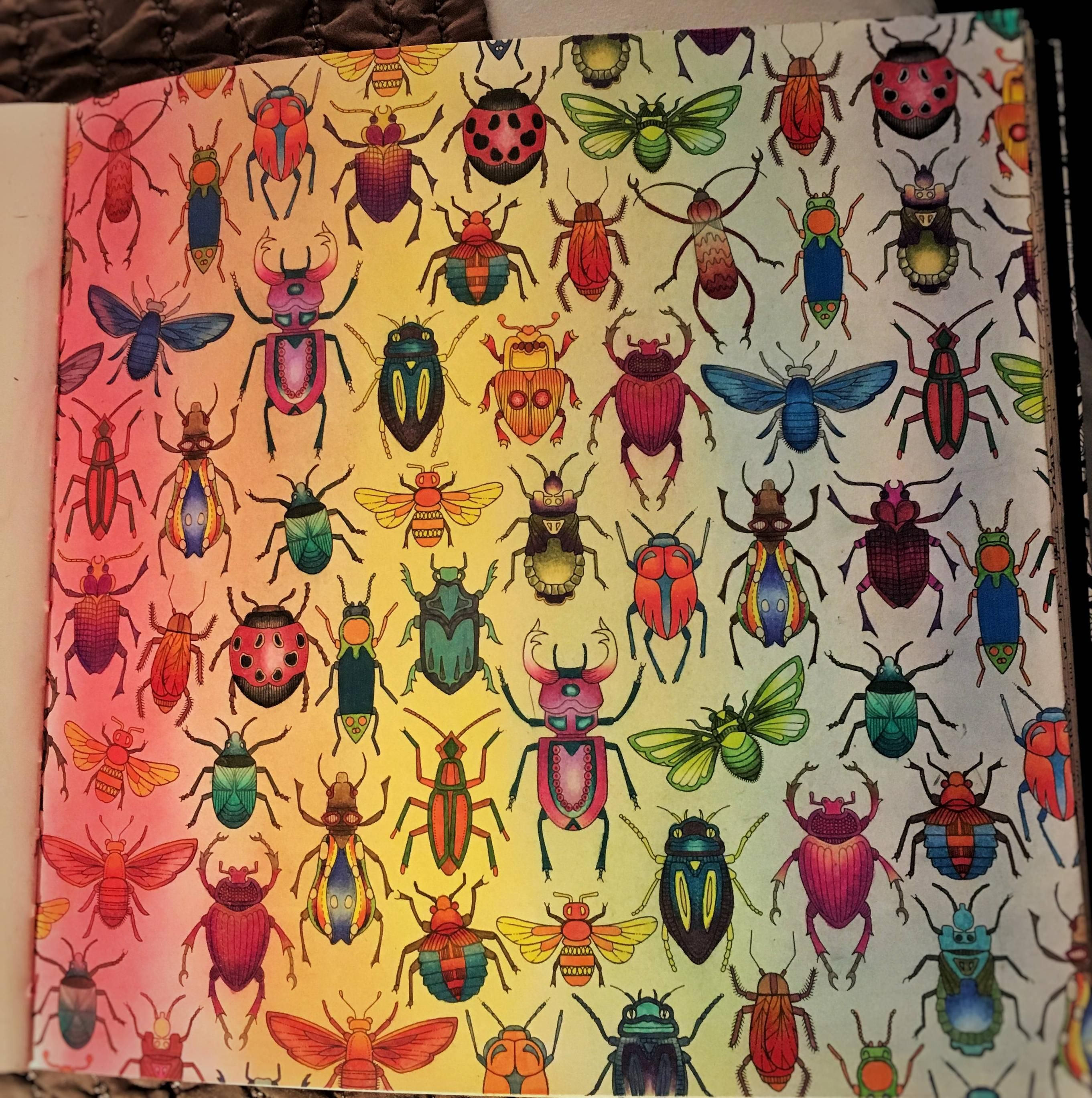 Colouring Coloring Adultcoloringin Inspiration Super Frustrating Bug Page From Secret Garden