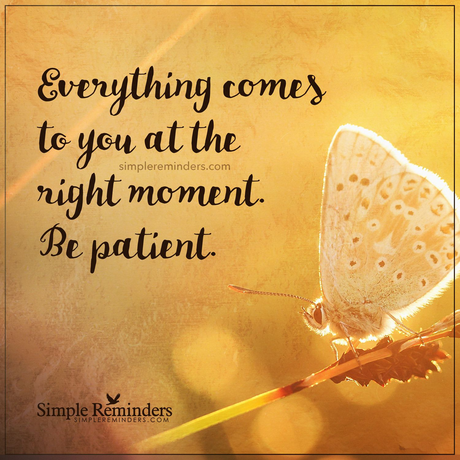 Be patient Everything es to you at the right moment Be patient — Unknown