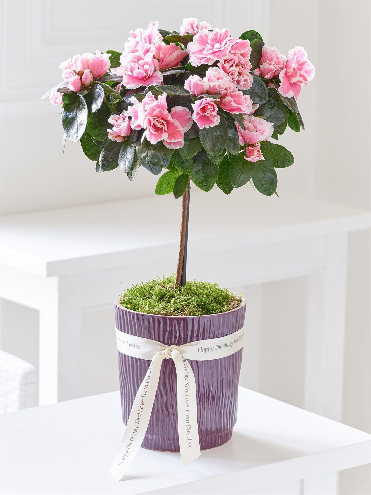 Product Image Flowers delivered, Order flowers online