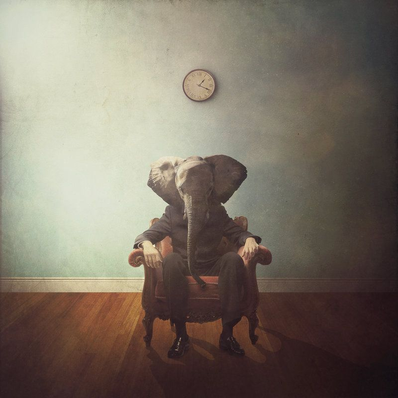 The First Day by Michael Vincent Manalo