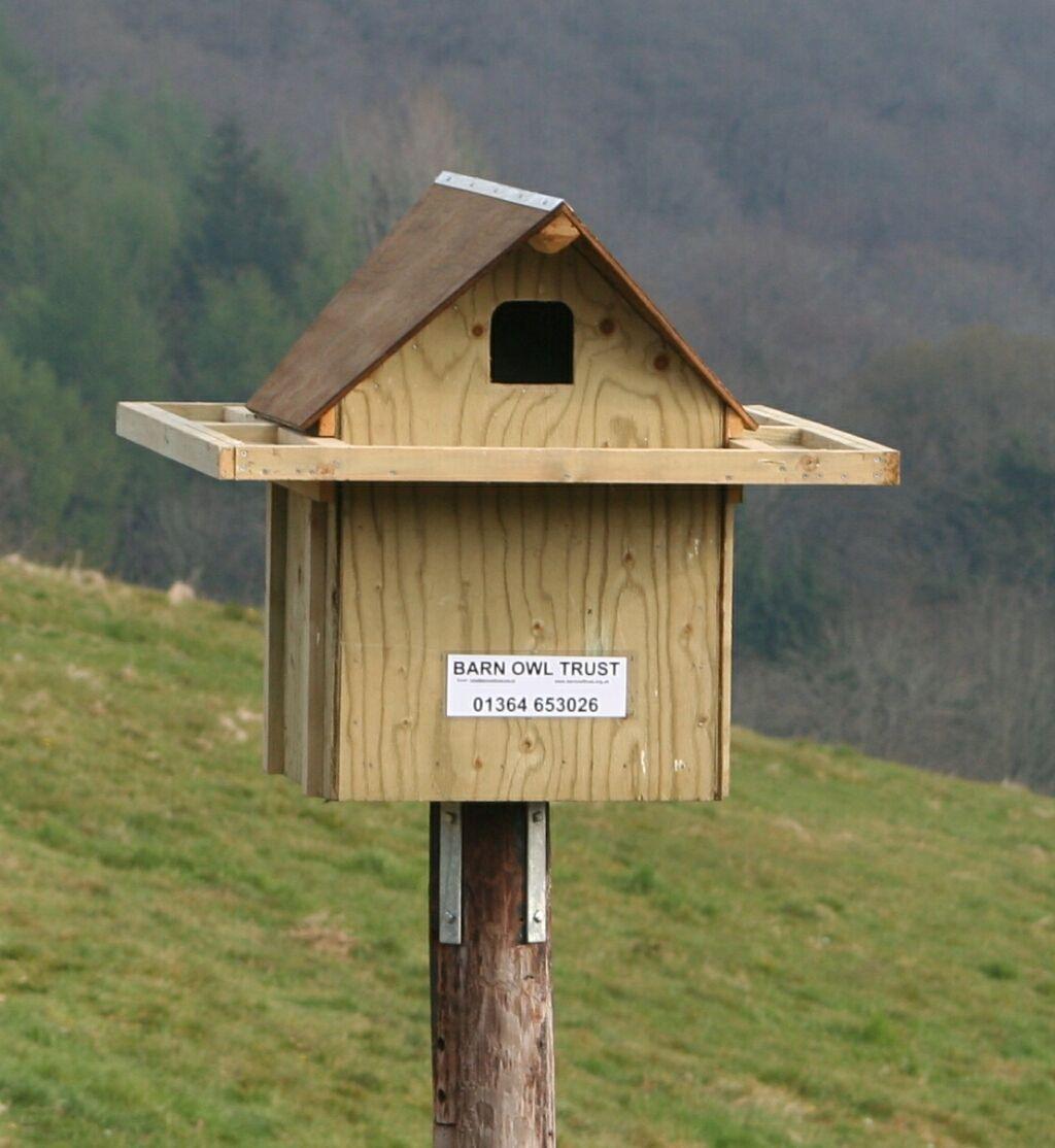 Barn Owl Nestboxes For Inside Buildings Bird Houses Diy Bird House Bird House Kits