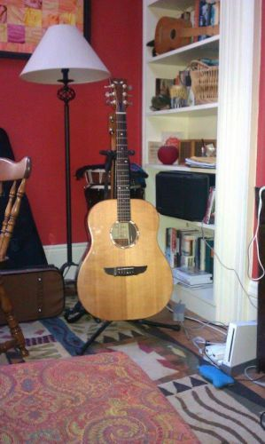 Beloved and beautiful guitar - rosewood back and sides, spruce top, fishman pickup, in soft padded black gig bag- played in many gigs, recorded with it. Bought in 2001 - never wanted another...