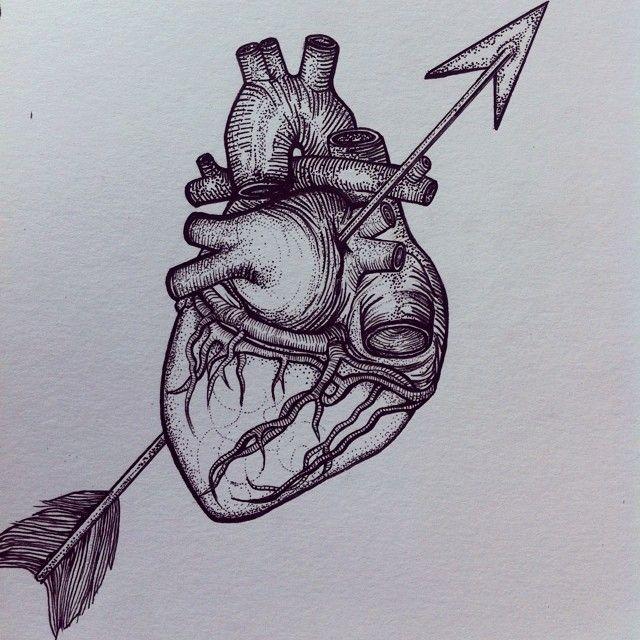 Foxglove Illustration Heart Break Drawing Illustration