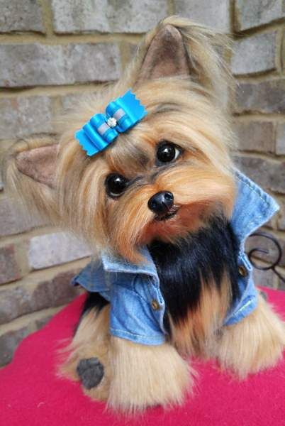 Rocky A Life Size Yorkshire Terrier Puppy Dog By Brigitte Crowe