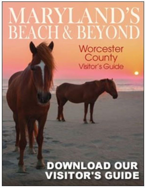 Visit Worcester County Maryland Beach And Beyond Maryland Beaches Worcester County Ocean City