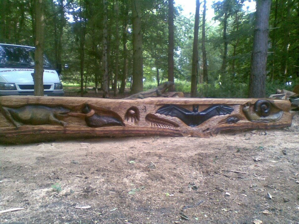 Chainsaw Carved Insect Bench Carved From Oak