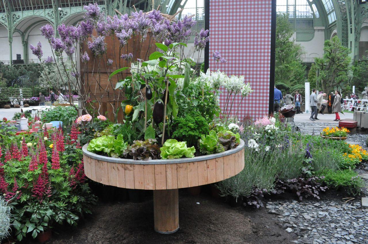 je cr e mon premier potager 6 l gumes compl mentaires m6 jardinage pinterest. Black Bedroom Furniture Sets. Home Design Ideas