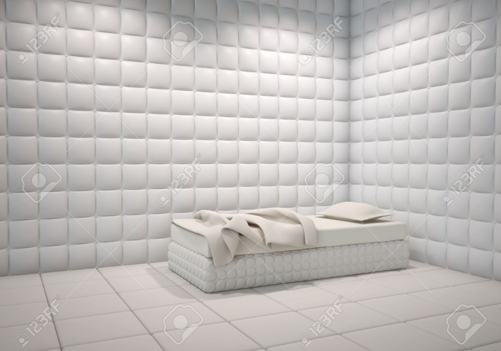 padded room Google Search in 2020 Room wall colors