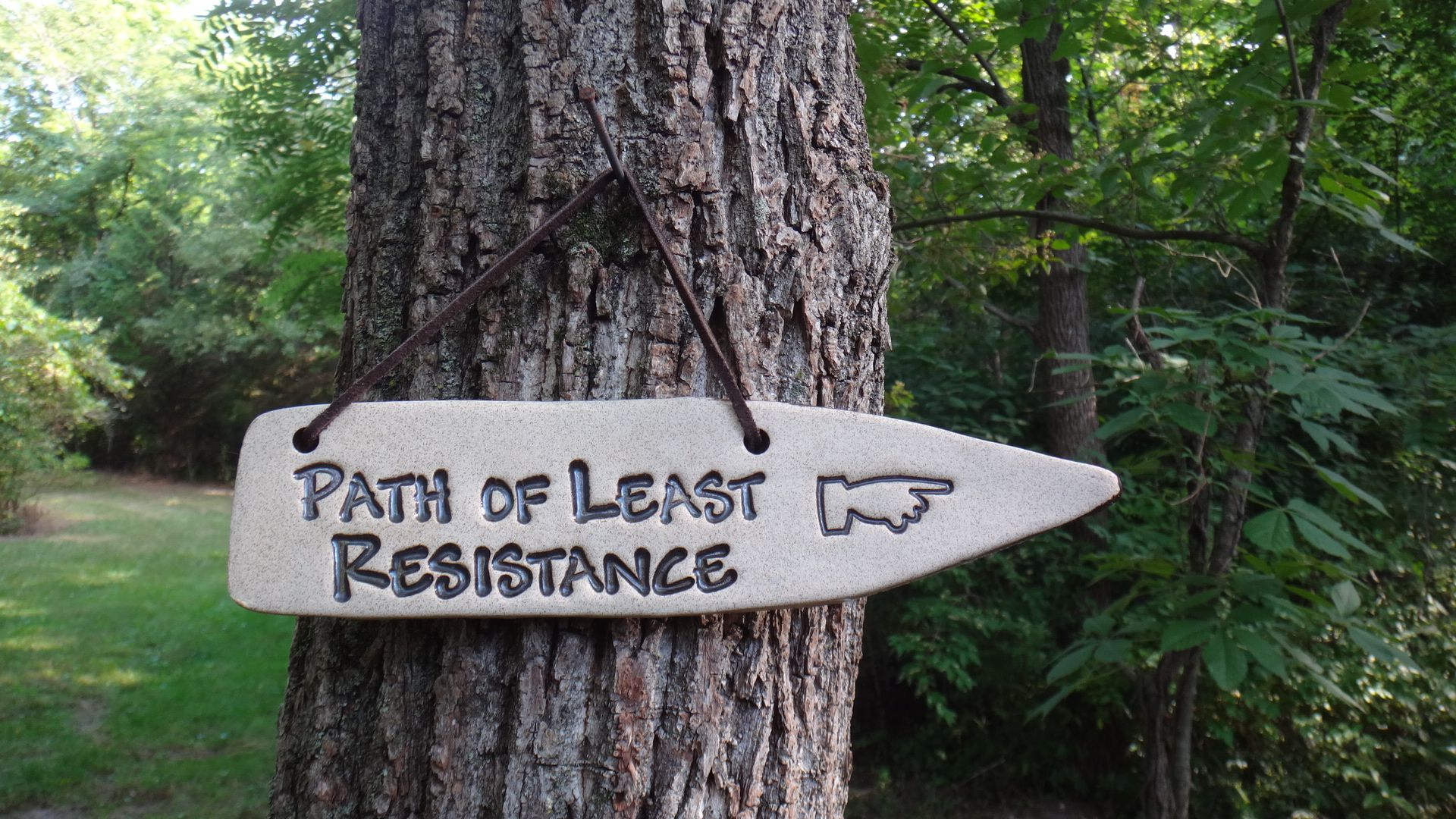 Path Of Least Resistance Trilha
