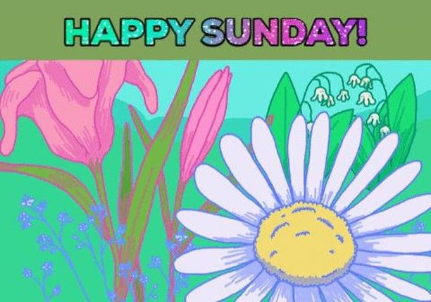 #sunday #funday #happy #goodday #adcockrentals #sanfordnc #sanfordsunday