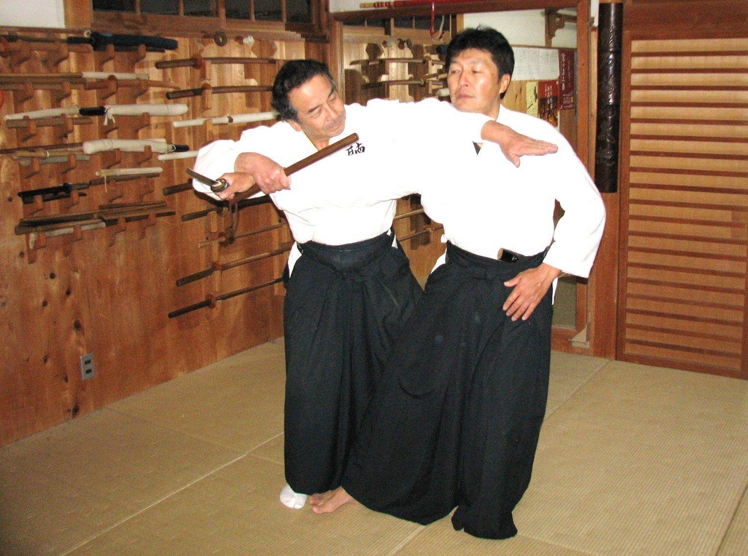 Ono Yotaro, Chofukan Dojo Soke, Martial arts, Martial