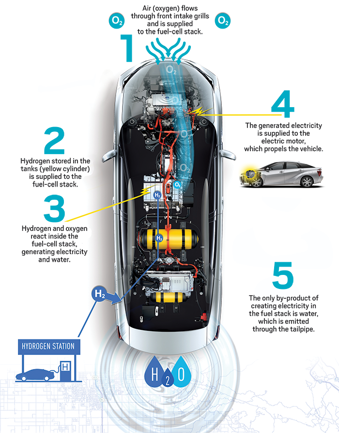 This diagram shows the main ponents of the Toyota Mirai fuelcell car | Cars | Fuel cell