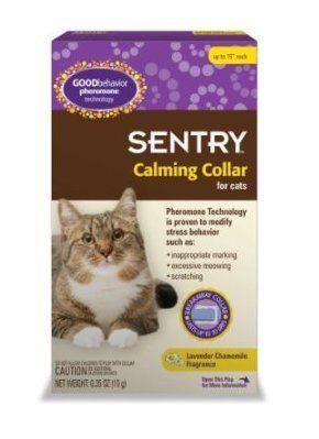 Goodbehavior Pheromone Calming Collar Cat 15 In Male Cat Collars Pheromone Spray Animals Pet More Info Could Be Found At The Im Calming Cat Cat Collars Cats