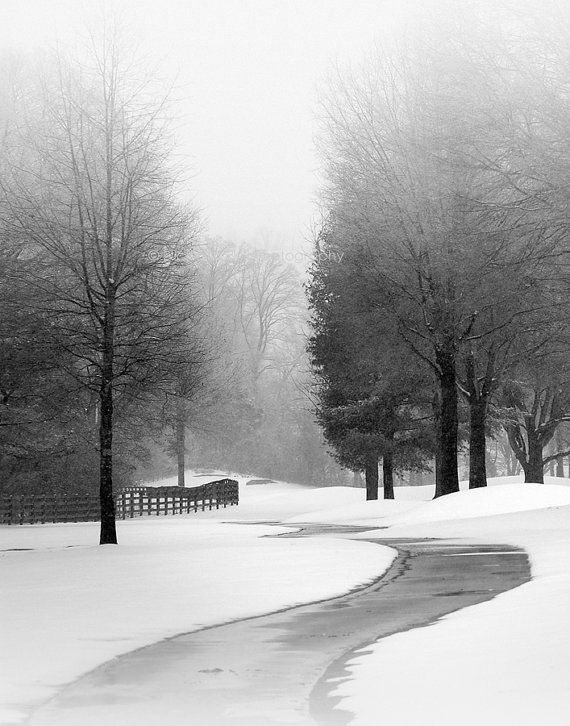 Black And White Landscape Photography Winter By Nicholasbellphoto Black And White Landscape Winter Landscape Landscape Photography Nature