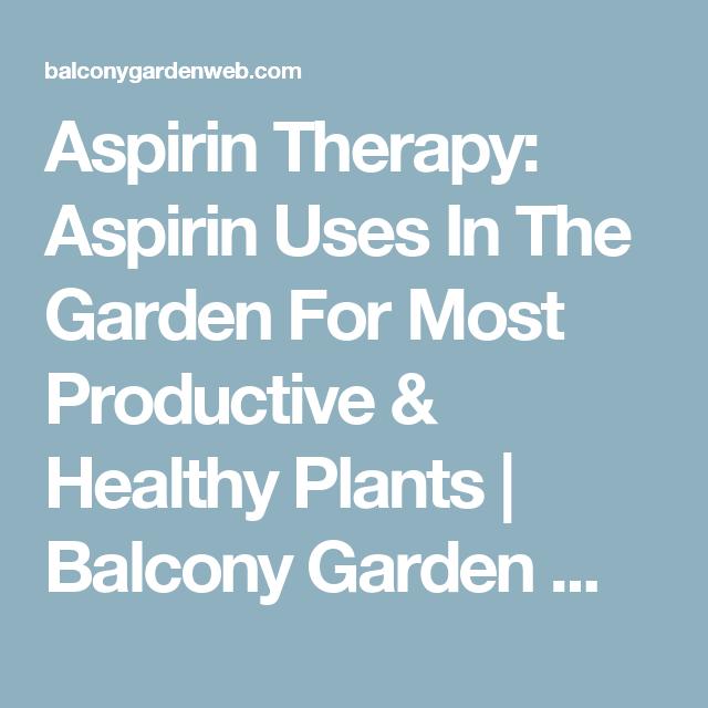 Aspirin Therapy: Aspirin Uses In The Garden For Most Productive & Healthy Plants | Balcony Garden Web