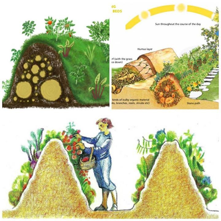 """Hügelkultur (German, meaning """"hill culture"""" or """"mound culture"""") is the garden concept of building raised beds over decaying wood piles. Decayed timbers become porous and retain moisture while releasing nutrients into the soil that, in turn, promote root growth in plant materials. (no link, image only)"""