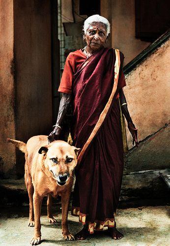 Cupa Blog 5 Jpg Street Dogs Dog Parents Dog Adoption
