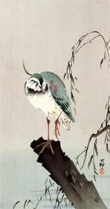 'Green Heron' Giclee Print - Koson Ohara | Art.com
