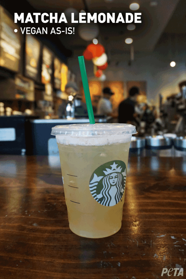 Your Guide To Vegan Starbucks Drinks July 2020 Peta Vegan Starbucks Drinks Vegan Starbucks Healthy Starbucks