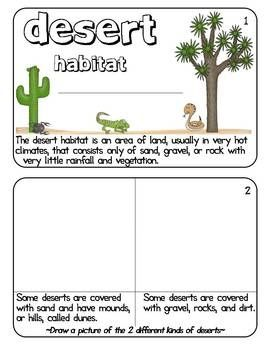 Desert habitat worksheets for 2nd grade