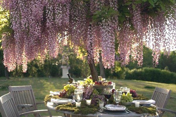 Pin de la casa de t en tea time jardines disenos de for Jardineria al aire libre casa pendiente