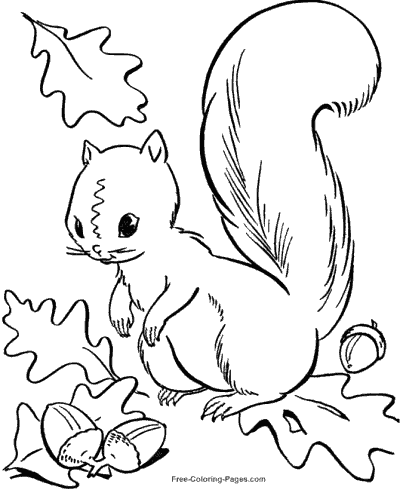 Autumn Coloring Pages Squirrel Coloring Page Fall Leaves Coloring Pages Fall Coloring Sheets