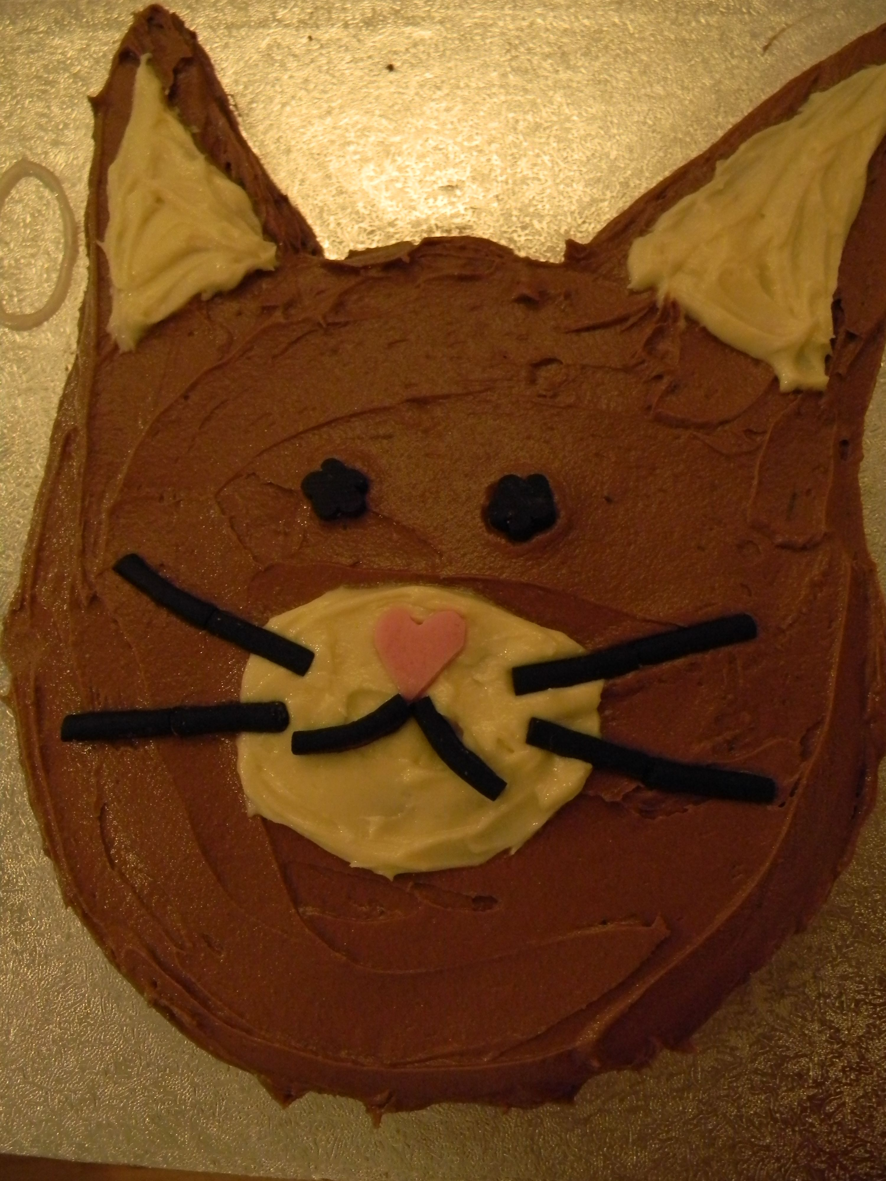 Recipe Chocolate Cat Cake Its purrrrrfect etc Chocolate
