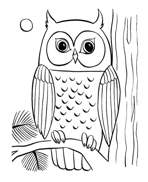 retro owl coloring pages | coloring pages of owls to print | ... Owl Coloring Page 29 ...