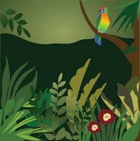 Rainforest Collage Example | Rainforest | Jungle art ...