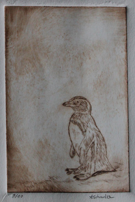 Pinguin, Mit Druck nach Rom Einer meiner Träume, mit einer Piaggio ...