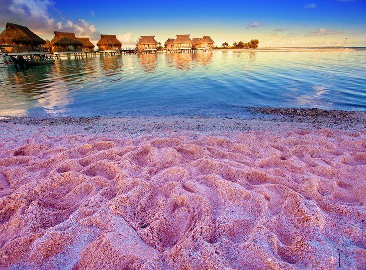 핑크 모래 해변을 찾을 수있는 최고의 장소 1 Pink Sands Bahamas