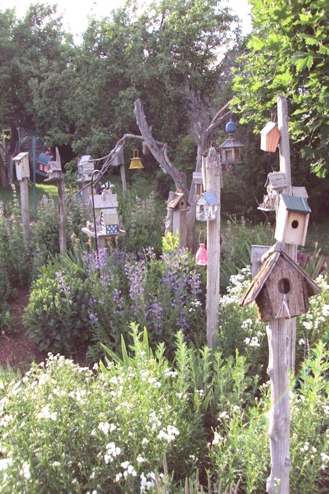 Vogelhauschen Tragen So Viel Zum Garten Bei Vogelhauschen Tragen So Viel Zum Garten Bei Bei Hinterhof Garten Garten Garten Design