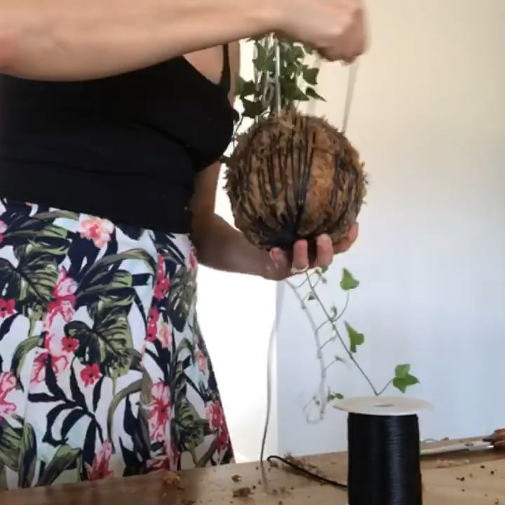 Want to know how to string a Kokedama? Here's a the fast version...