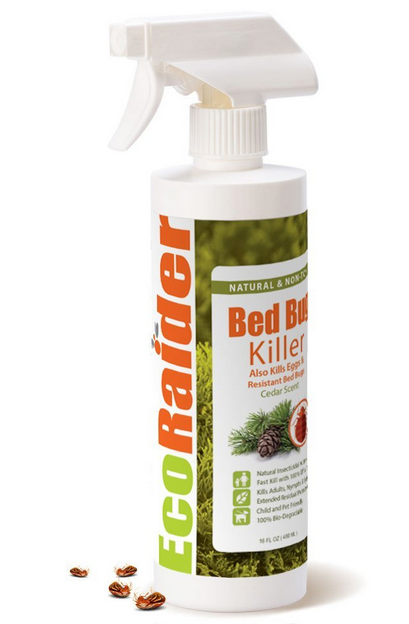 How Does Baking Soda Kill Bed Bugs? 4 Steps To Kill