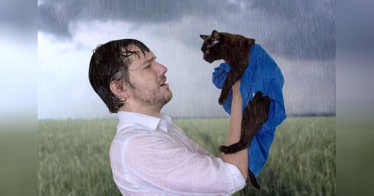 Iconic Movie Scenes Recreated With Cats Famous Movie Scenes Movie Scenes Famous Movies