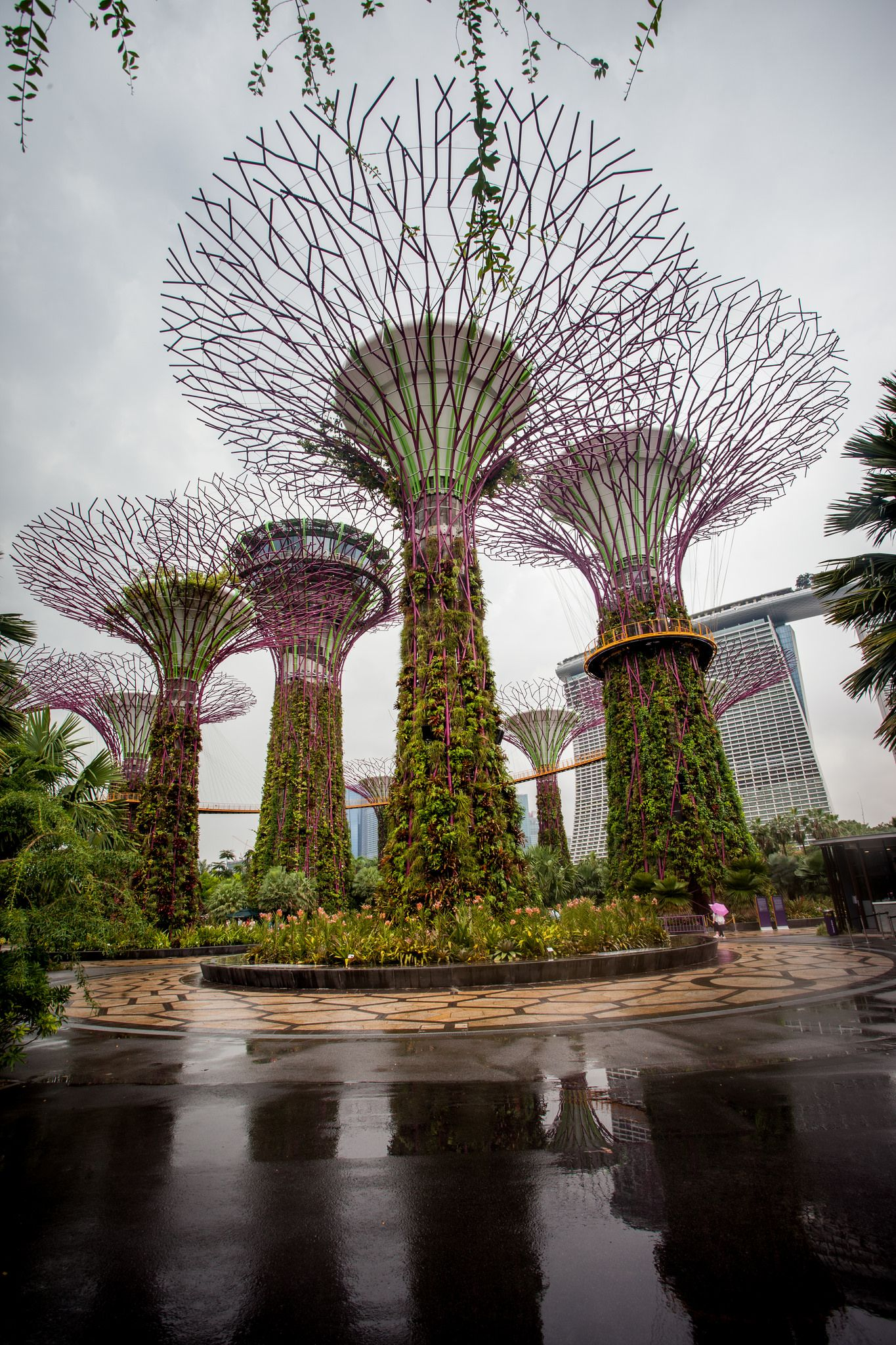 Gardens By The Bay In Singapore With Images Singapore Garden Gardens By The Bay Garden Services