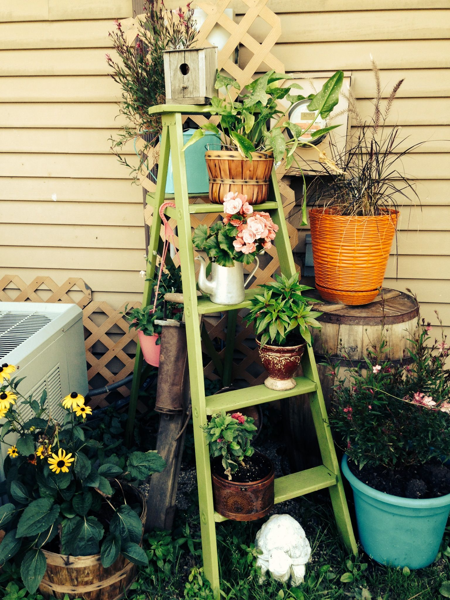 Garden Ladder To Hide The Meter And Cable Boxes