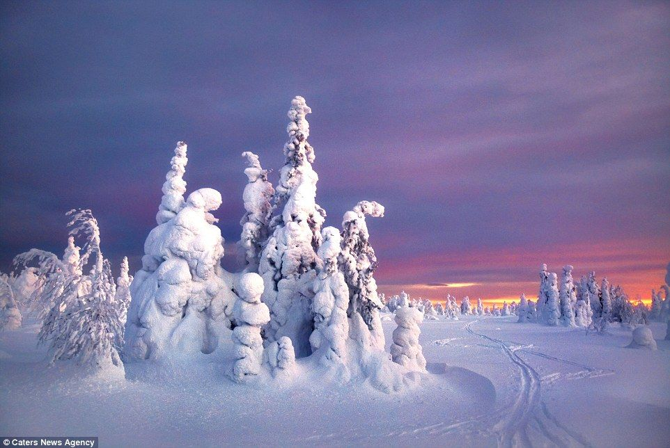 It may look like a scene from the magical world of Narnia, but these photos were snapped in a remote part of Western Russia