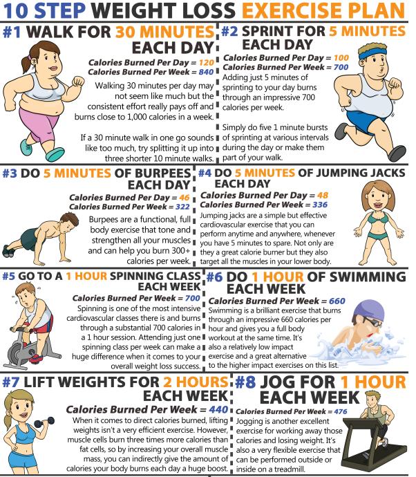Free spinning program for weight loss program