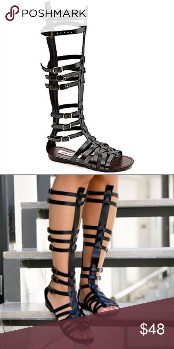 1d230948ea1 Steve Madden Sparta Tall Gladiator sandals. Size 7 Steve Madden ...