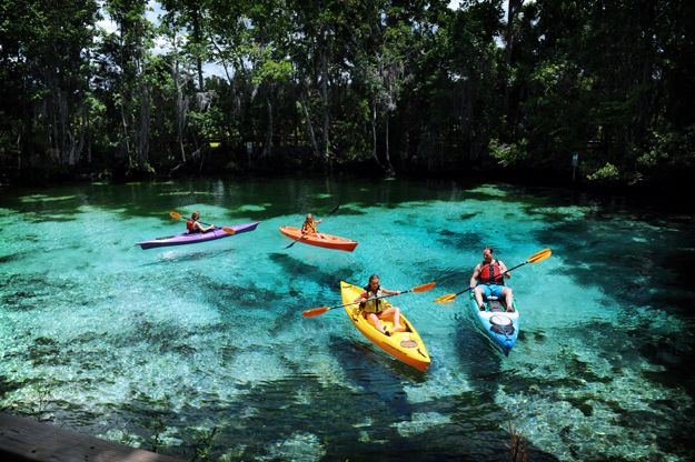 Image result for florida kayaking