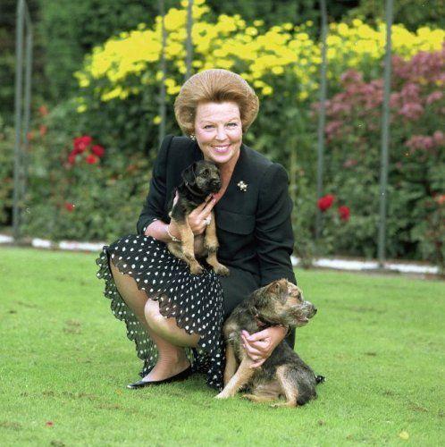 Reine Beatrix Border Terrier Huisdier Terrier
