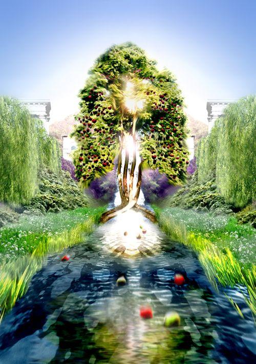 Résultats de recherche d'images pour «new jerusalem tree of life»