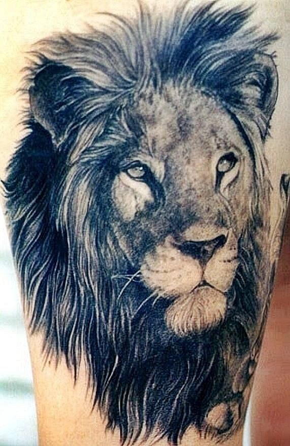 wie ist das lion tattoo modell art l wen t towierung. Black Bedroom Furniture Sets. Home Design Ideas