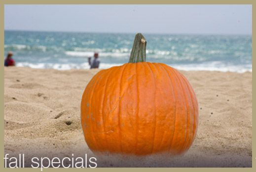 For all things Fall in Santa Monica, check out our festive specials page.